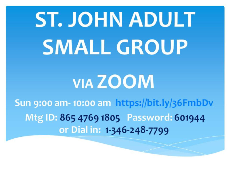 Adult Small Groups on ZOOM