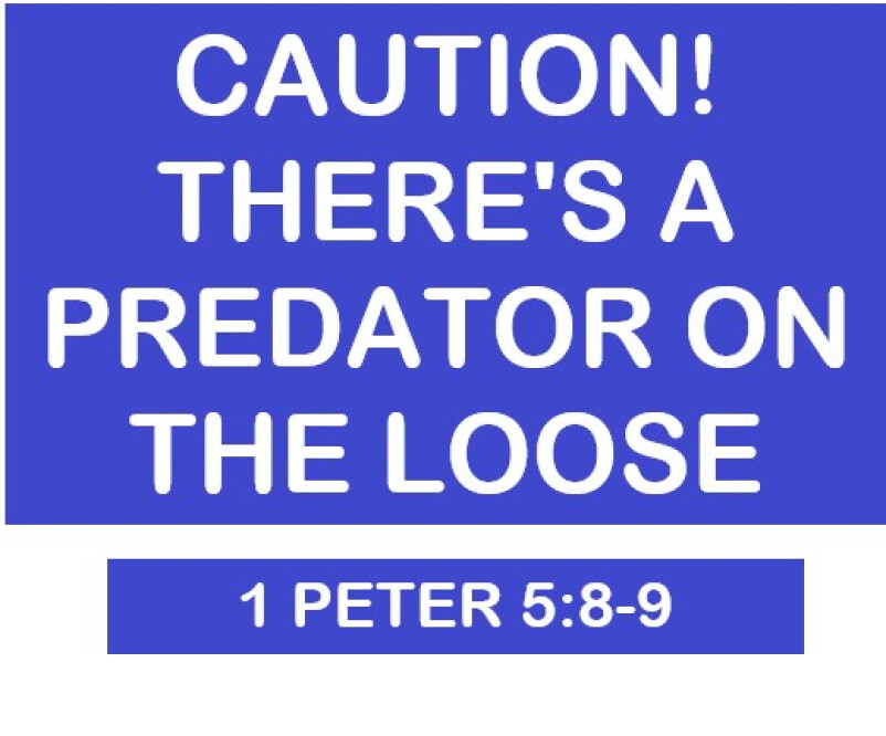 CAUTION! There's A Predator on the Loose
